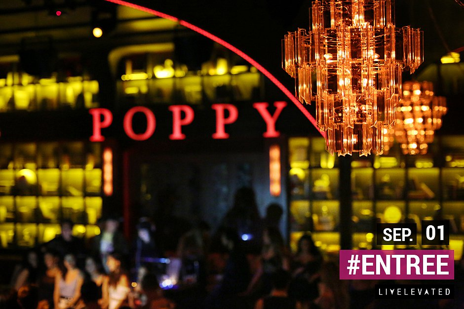 Still Feels New, ENTREE Fridays at Poppy Nightclub